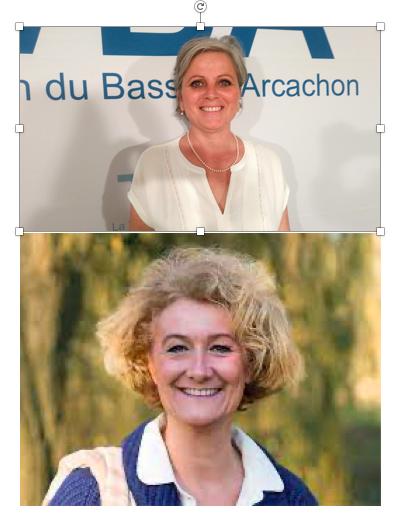 Vague de nominations : S Auconie, S Panonacle, B Pompili, Ø Løseth et L Schneider-Maunoury,