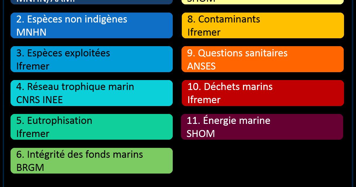 La France rappelée à l'ordre par la commission européenne pour l'état écologique des eaux marines
