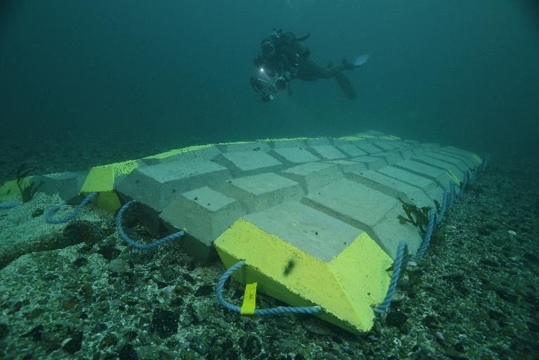 Nouvelles mesures sur l'impact des câbles sous-marins