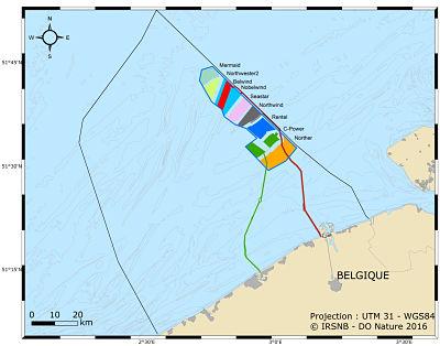 Eolien en mer, impacts et bénéfices : 10 ans d'expérience en Belgique