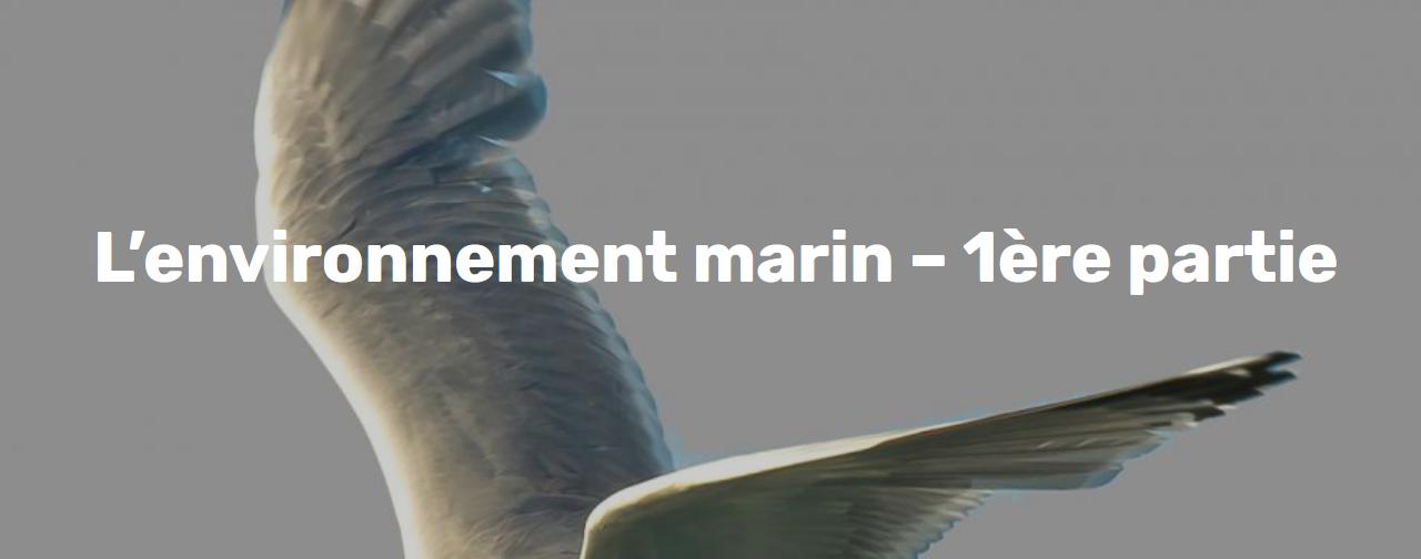 CPDP Bretagne Sud éoliennes flottantes : « L'environnement marin – 1ère partie » au Palais des Congrès de Lorient à 18h