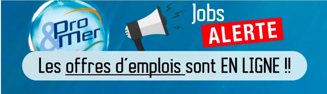 BPN met en ligne les 1200 offres d'emplois prévus pour le salon Pro&Mer