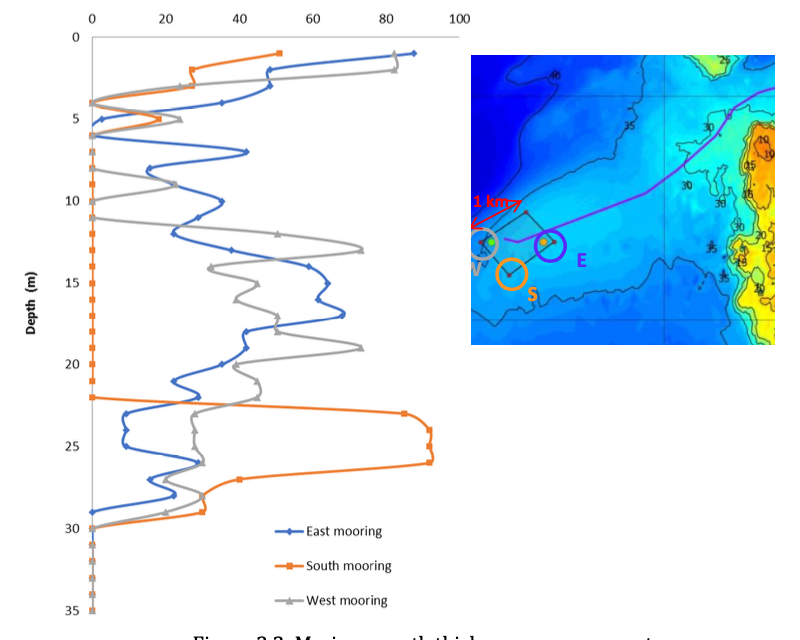 Effect of Marine Growth on Floating Wind Turbines Mooring Lines Responses