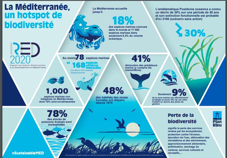 La Méditerranée : comment atteindre un bon état écologique ? Les énergies renouvelables en mer pourront-elles y participer ?