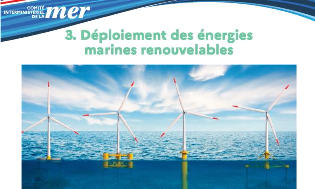 CIMer (2020) 2021 : La CNDP va être saisie pour lancer un débat public sur le projet d'Oléron