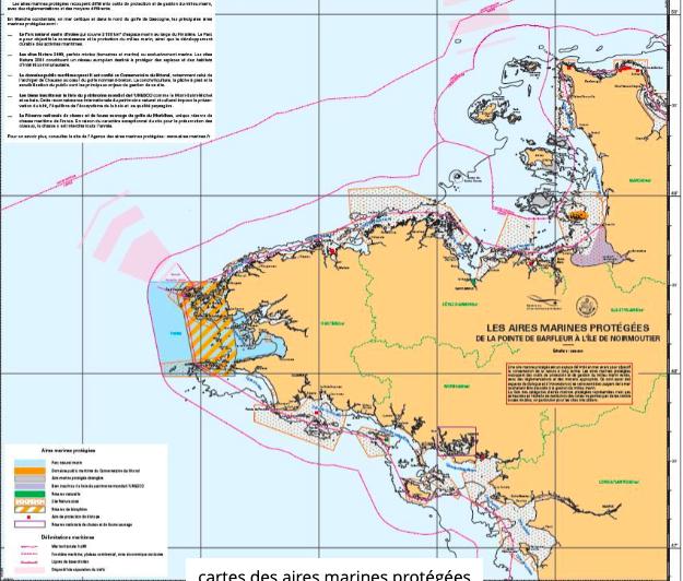 Emmanuel Macron annonce une nouvelle stratégie pour les aires marines protégées