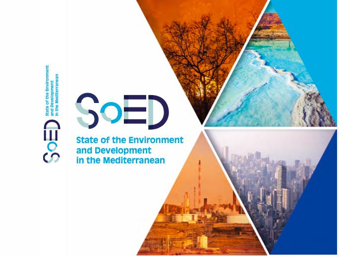 Rapport RED 2020 – Méditerranée