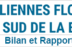 CPDP Bretagne sud : Compte rendu et Bilan du débat public «des éoliennes flottantes»