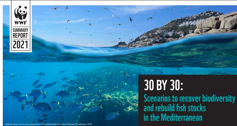 Le rapport de WWF sur la protection de la mer Méditerranée vient de paraître